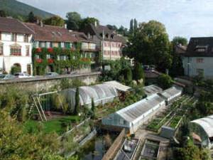 jardin010148