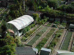jardin010149